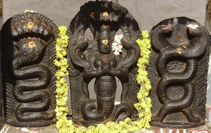 Naga Pratishthapana