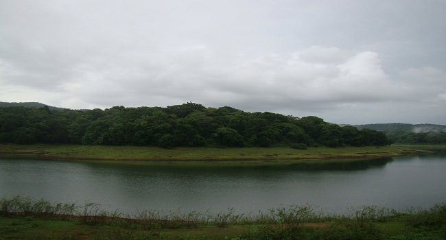 Vazhani Dam/വാഴാനി ഡാം