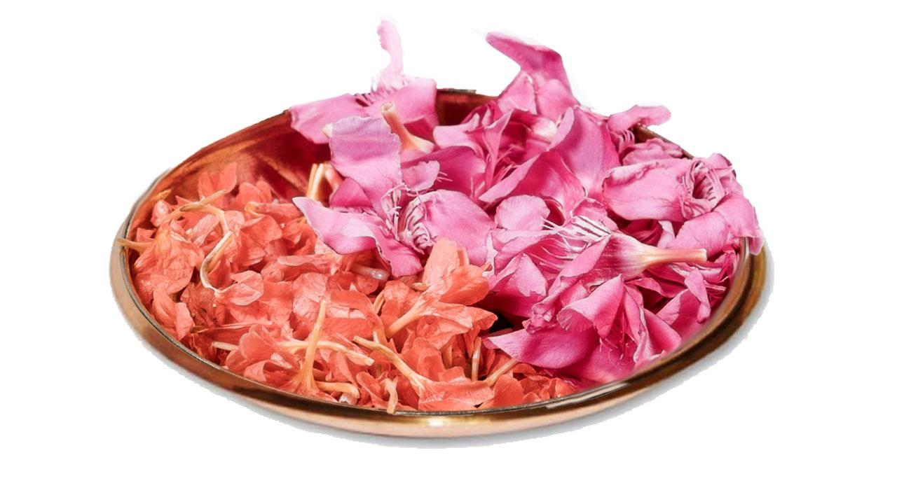 Nityarchane(whole month)/ನಿತ್ಯಾರ್ಚನೆ(ತಿಂಗಳಿಗೆ)