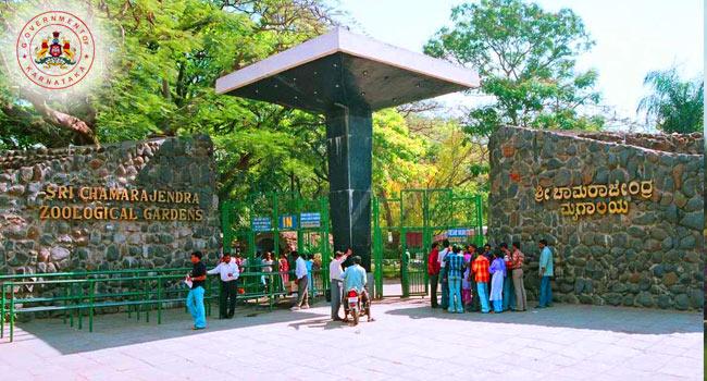 Mysore Zoo / ಮೈಸೂರು ಮೃಗಾಲಯ