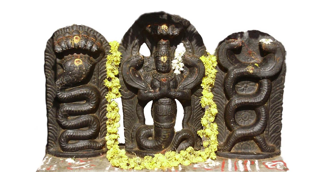 Sarpa Samskara / ಸರ್ಪ ಸಂಸ್ಕಾರ
