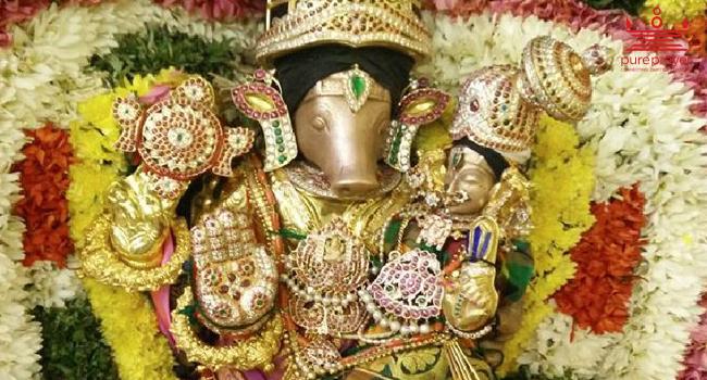 Sri Adhivaraha Perumal Temple / ஸ்ரீ ஆதிவராஹ...