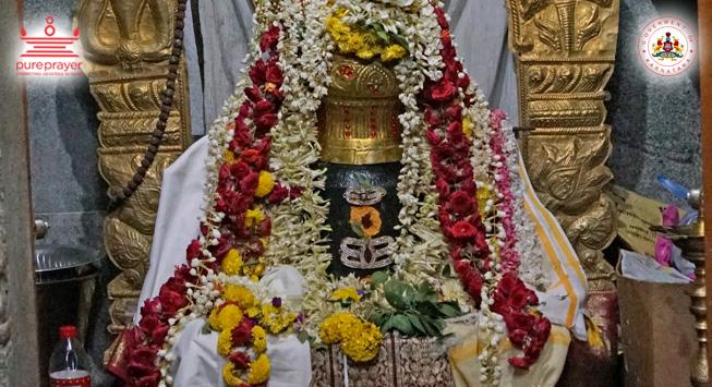 Special Puja's / ವಿಶೇಷ ಪೂಜೆಗಳು