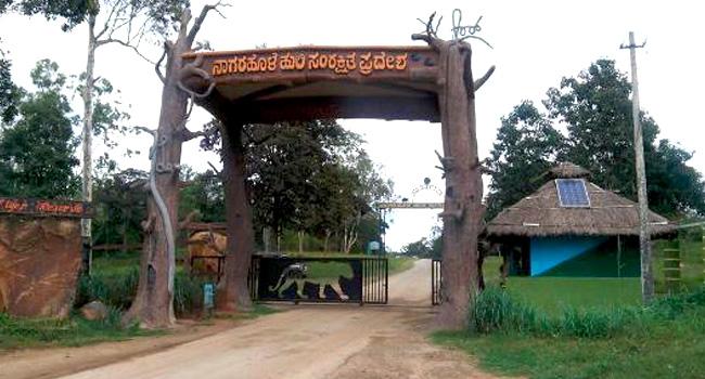 Nagarahole National Park / ನಾಗರಹೊಳೆ ರಾಷ್ಟೀಯ...