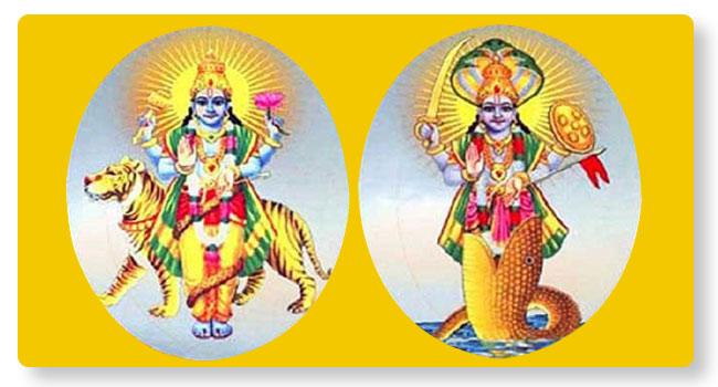 Rahu Ketu Parihara Puja