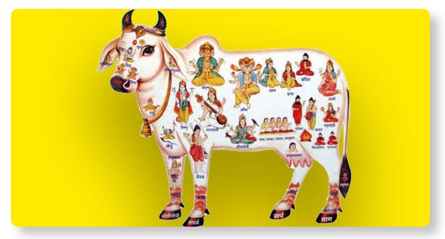 Go Puja
