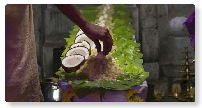 Ashlesha Bali