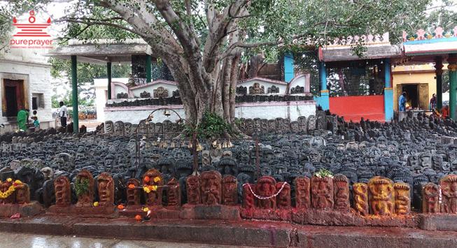 Sri Vidurashwatha Narayanaswamy Temple, Vidurashwatha / ಶ್ರೀ...