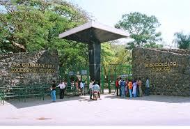Mysore Zoo/ಮೈಸೂರ್ ಮೃಗಾಲಯ