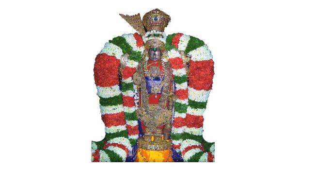 Sri Vairamudi Brahmotsavam / ಶ್ರೀ ವೈರಮುಡಿ ಬ್ರಹ್ಮೋತ್ಸವ