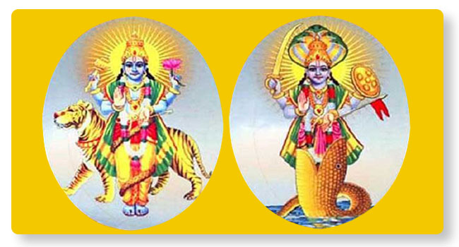 Rahu Ketu Sarpa Sandhi Puja