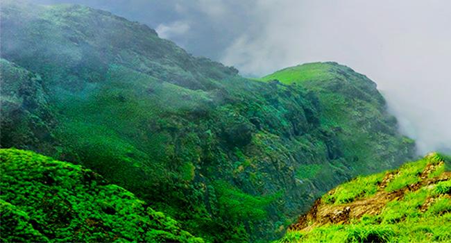 Thadiyandamol Hill / ತಡಿಯಂಡಮೋಳು ಬೆಟ್ಟ
